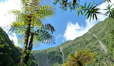 La Réunion, un éden volcanique
