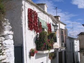 Andalousie : des Alpujarras à la mer
