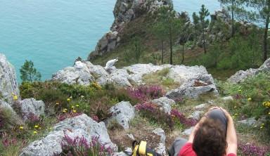 De Camaret à Douarnenez : la presqu'île de Crozon et la baie de Douarnenez