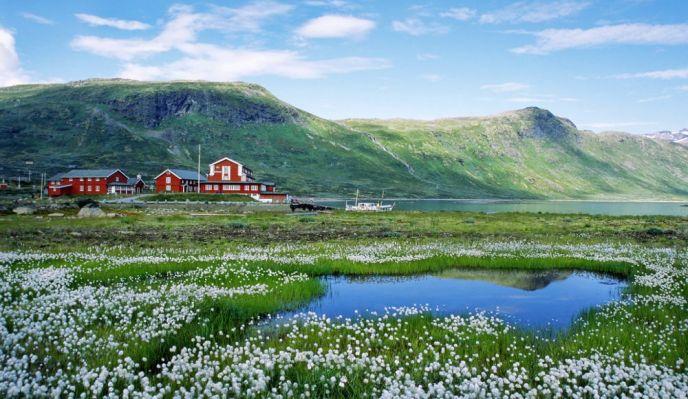 Norvège, montagne des Géants