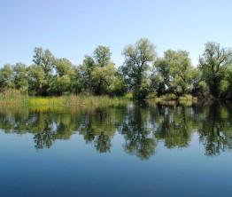 Le Delta du Danube, de Tulcea à la Mer Noire