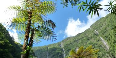 La Réunion, un Eden volcanique