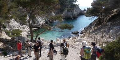 Des calanques de Cassis à l'arrière pays provencal