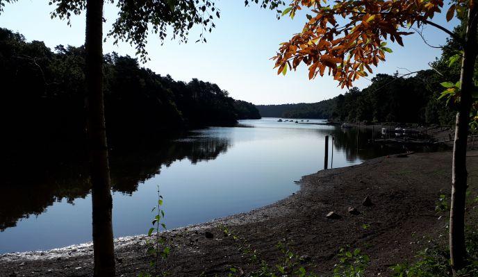 Le lac de Guerlédan (marche nordique)