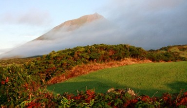 Les Açores : balades, baleines et hortensias