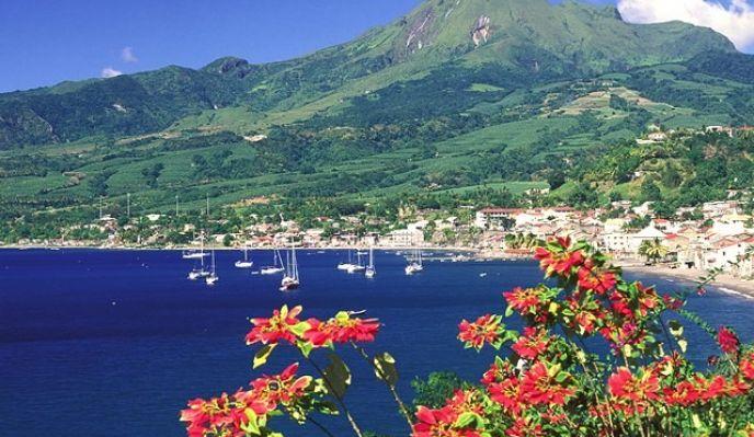 Martinique, l'île aux fleurs